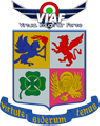 VIAF NoProfit Virtual Italian Air Force